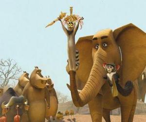Puzzle de El Rey Julian, el lemur de cola anillada junto a otros animales
