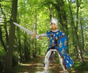 Puzzle de El valiente y encantador príncipe con el escudo y la espada