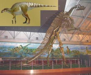 Puzzle de El Zhuchengosaurus es uno de los más grandes hadrosáuridos conocidos