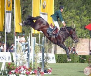 Puzzle de Equitación - Caballo y jinete en la prueba de salto