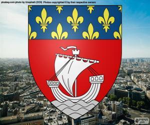 Puzzle de Escudo de París