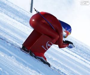Puzzle de Esquí de velocidad