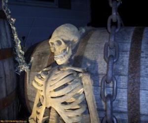 Puzzle de Esqueleto en la noche de Halloween
