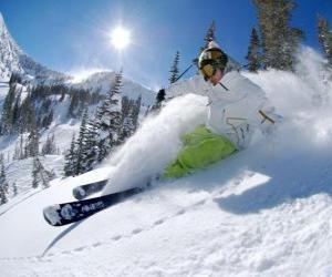 Puzzle de Esquiador fuera pista