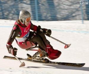 Puzzle de Esquiadora paralímpica en la competición de eslalom