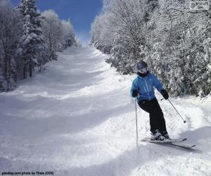 Puzzle de Esquiadora
