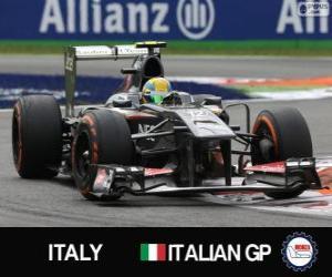 Puzzle de Esteban Gutierrez - Sauber - Monza, 2013
