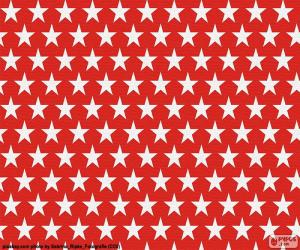 Puzzle de Estrellas blancas