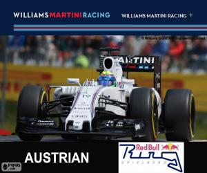 Puzzle de F. Massa, G.P Austria 2015