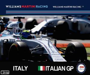 Puzzle de F. Massa, GP de Italia 2015