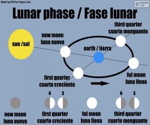 Puzzle de Fase lunar