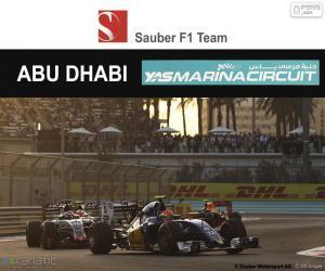 Puzzle de Felipe Nasr GP Abu Dhabi 16