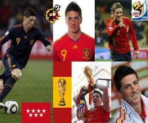 Puzzle de Fernando Torres (Nos hizo soñar) delantero Selección Española