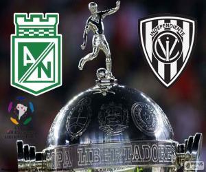 Puzzle de Final Copa Libertadores 16