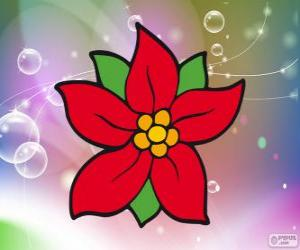 Puzzle de Flor de Navidad
