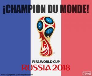 Puzzle de Francia, campeona del mundo 2018