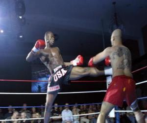 Puzzle de Full contact (Kickboxing Americano)