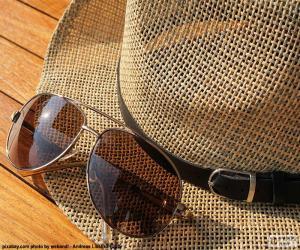Puzzle de Gafas de sol y sombrero