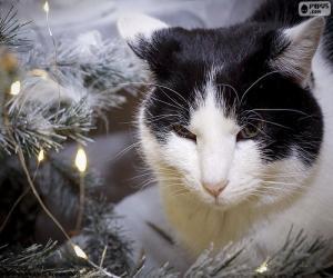 Puzzle de Gato en Navidad