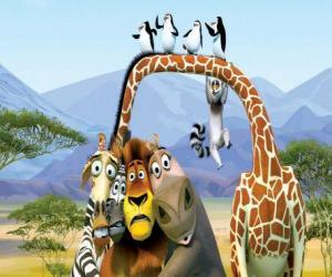 Puzzle de Gloria la hipopótamo, Melman la jirafa, Alex el león, Marty la cebra con otros protagonistas de las aventuras