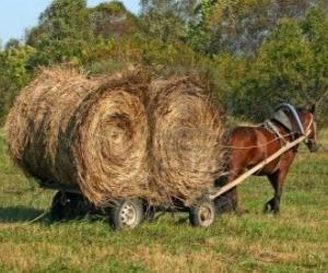 Puzzle de Granjero con carro tirado por caballo