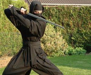 Puzzle de Guerrero ninja y la lucha con la katana