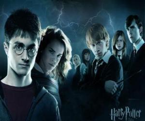 Puzzle de Harry Potter junto a sus amigos