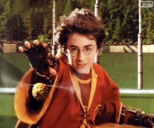 Puzzle de Harry Potter lanzando una bola