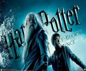 Puzzle de Harry Potter y el misterio del príncipe
