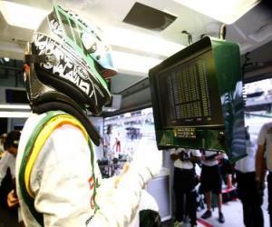 Puzzle de Heikki Kovalainen - Lotus - Sepang 2010