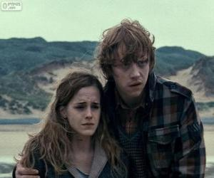 Puzzle de Hermione Granger y Ron Weasle