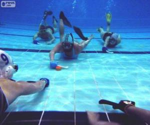 Puzzle de Hockey subacuático