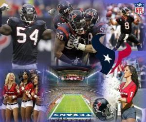 Puzzle de Houston Texans