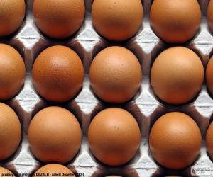 Puzzle de Huevos de gallina