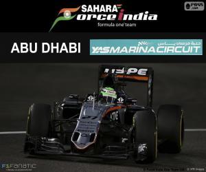 Puzzle de Hulkenberg, GP Abu Dhabi 16