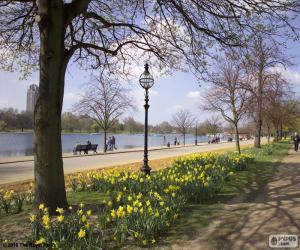 Puzzle de Hyde Park, Londres