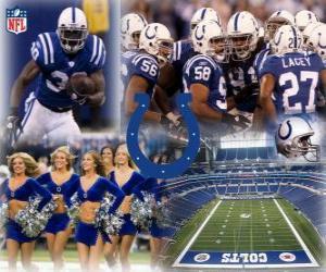 Puzzle de Indianapolis Colts