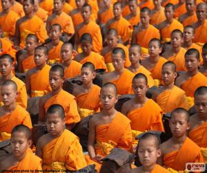 Puzzle de Jóvenes monjes budistas
