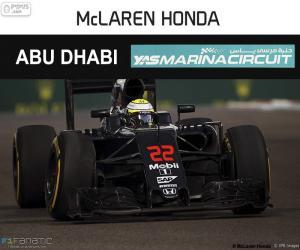 Puzzle de J Button, GP Abu Dhabi 2016