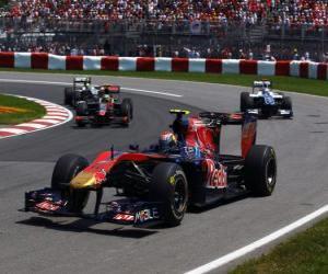 Puzzle de Jaime Alguersuari - Toro Rosso - Montreal 2010