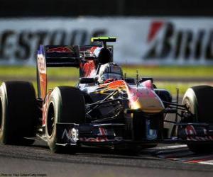 Puzzle de Jaime Alguersuari - Toro Rosso - Suzuka 2010