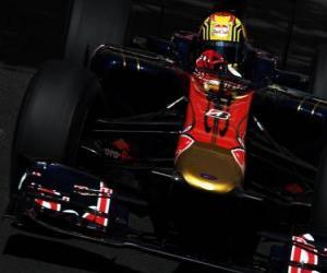 Puzzle de Jaime Algueruari- Toro Rosso - Monte-Carlo 2010