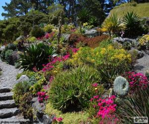 Puzzle de Jardín botánico