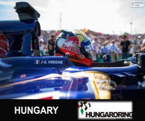 Puzzle de Jean-Eric Vergne - Toro Rosso - Hungaroring, 2013