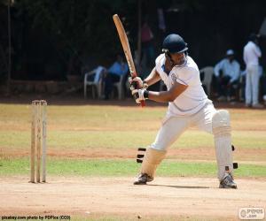 Puzzle de Jugador de críquet preparado para batear la bola