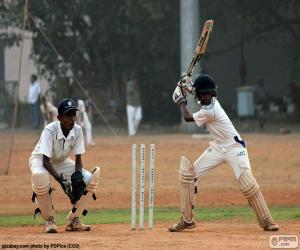 Puzzle de Jugador de críquet