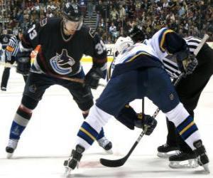 Puzzle de Jugadores en un partido de hockey sobre hielo