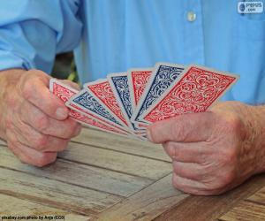 Puzzle de Jugando a las cartas