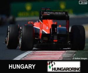 Puzzle de Jules Bianchi - Marussia - Hungaroring, 2013