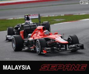 Puzzle de Jules Bianchi - Marussia - Sepang 2013